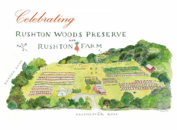 celebrating-rushton-invitationcard-palace_cover_800