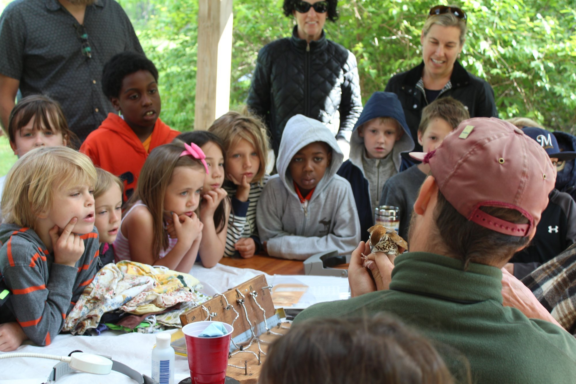 Elementary-students-observing-banding-of-a-Wood-Thrush.-Photo-by-Kelsey-Lingle.JPG