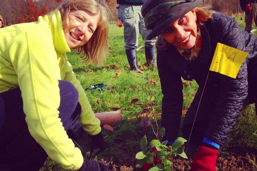 Planting of 900 Trees Along Crum Creek