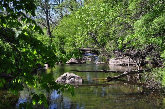 crum creek justin thompson