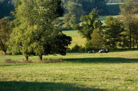 Willistown Conservation Trust:  Celebrating Kirkwood