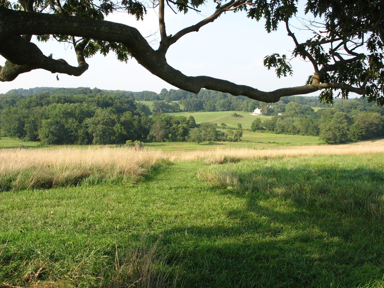 Kirkwood september 2007 view under oak tree by E Stokes