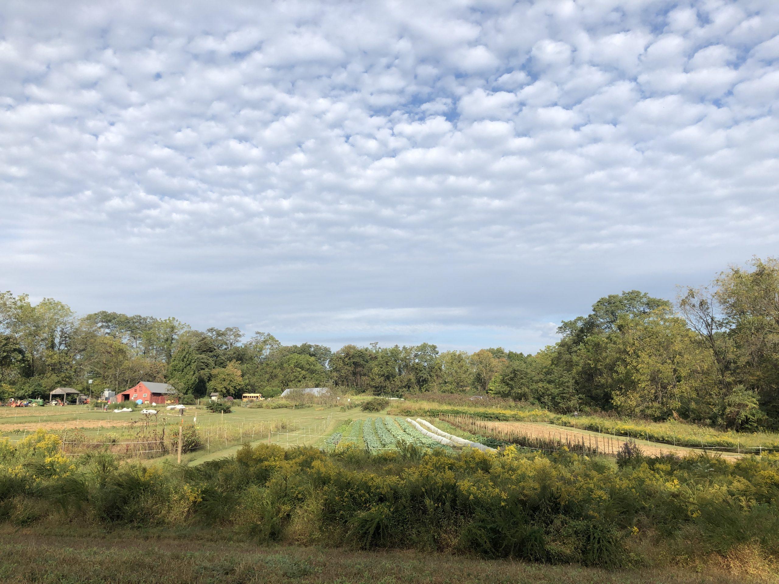 Rushton Farm in October.  Photo by Jodi Spragins