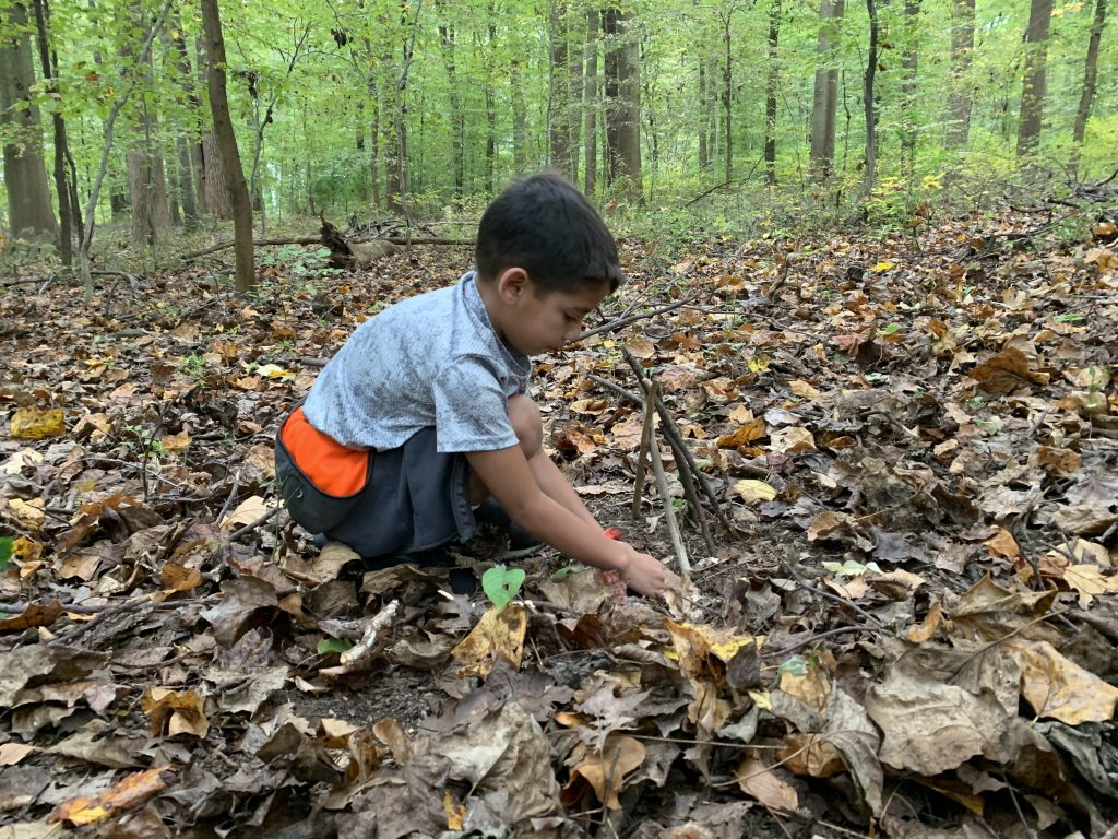 Nature Escapes for Kids: Healing Forest Art Walk