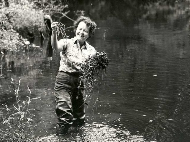 Clean Water Science Pioneer – Ruth Patrick