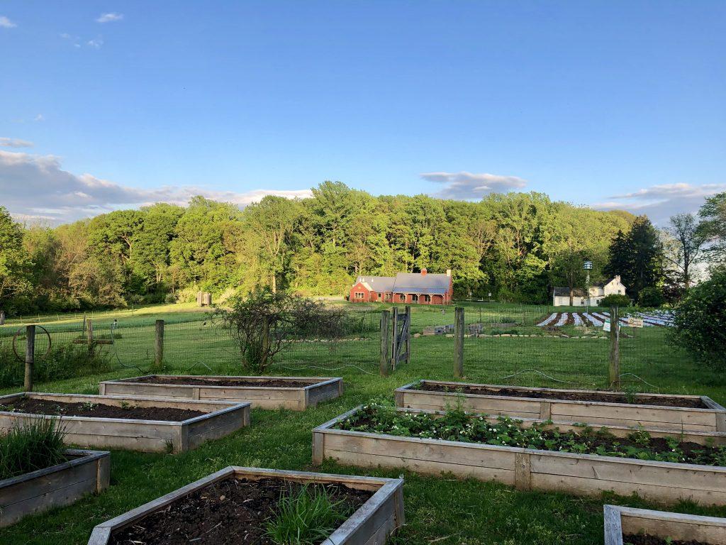 Rejuvenation at Rushton Farm!
