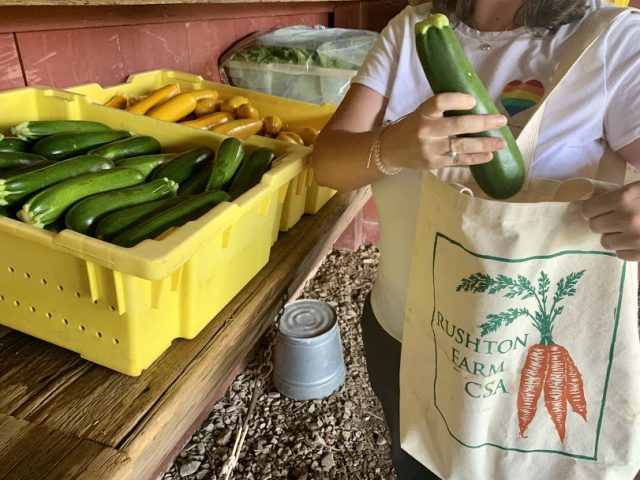 Plastic Free July in the Age of COVID-19