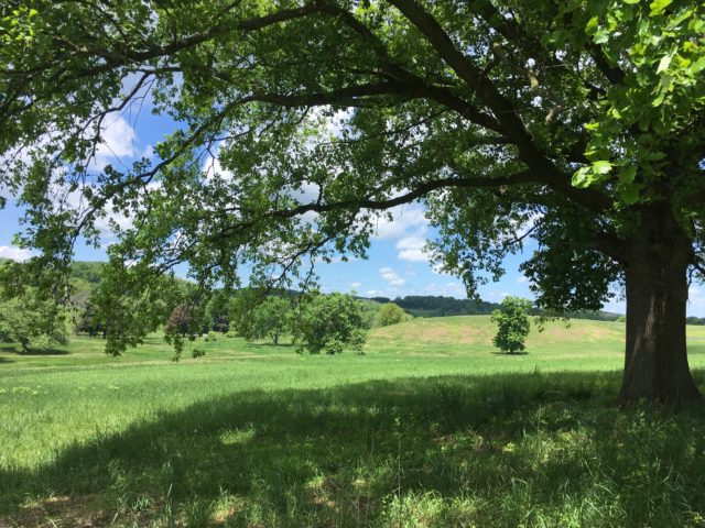 Legacy of the Land: A History of Land Conservation in Willistown