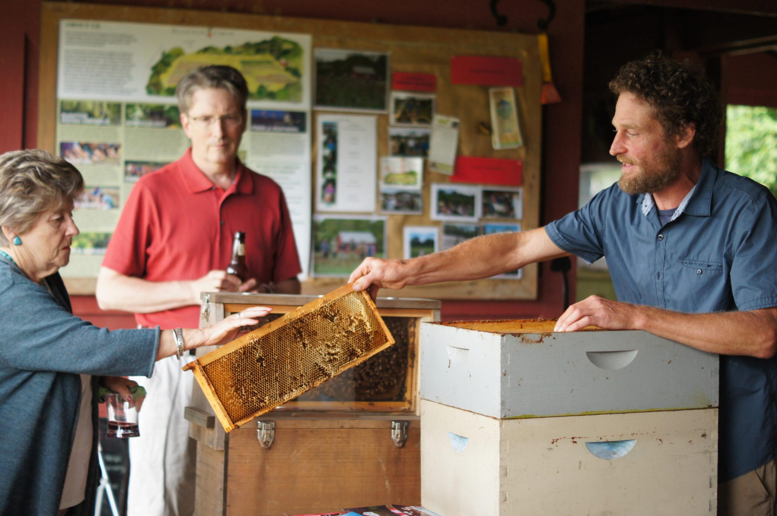 Honey Tasting with Noah Gress, Rushton Farm Field Manager