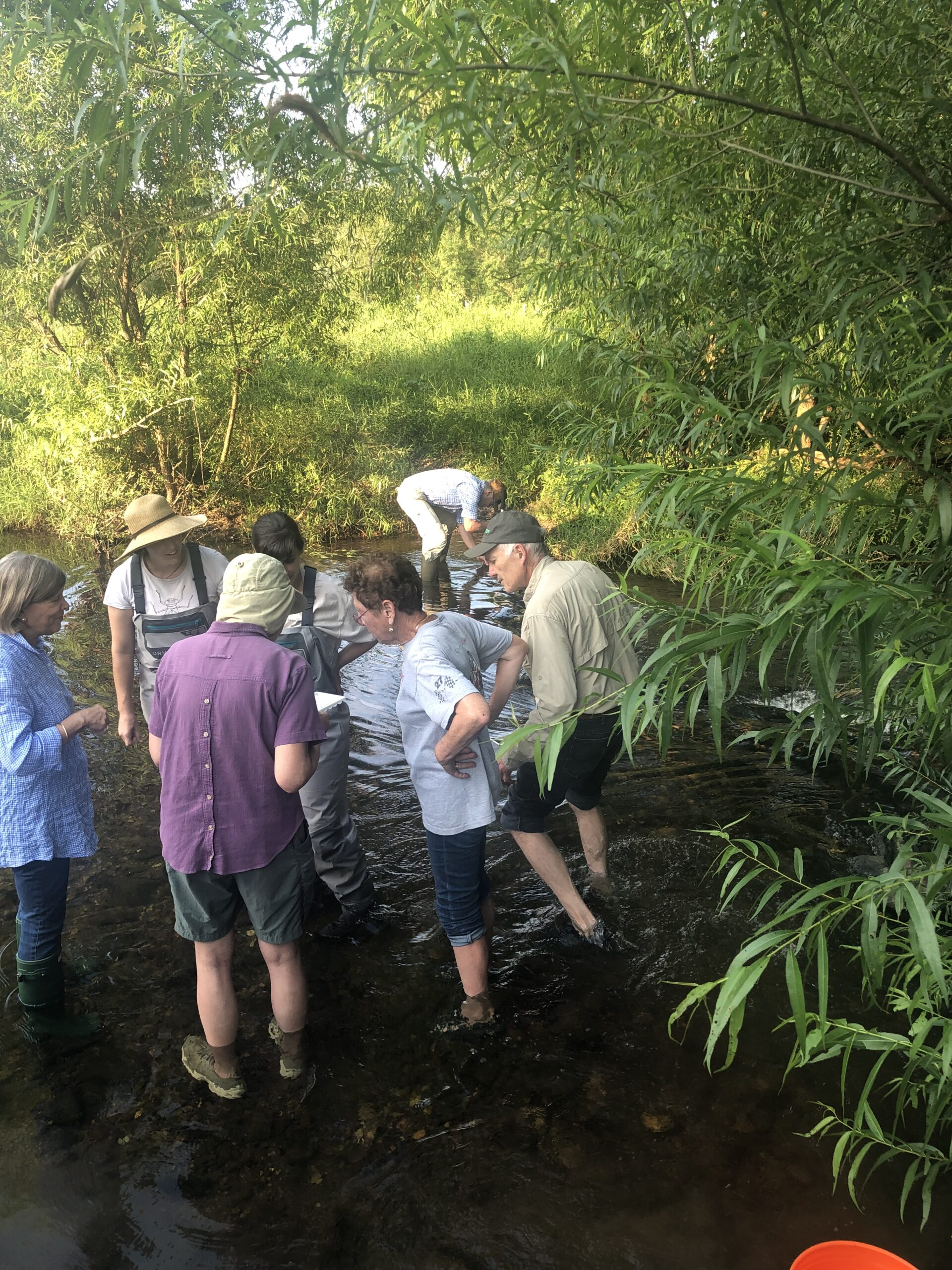 In stream watershed experience with Watershed Director Lauren McGrath