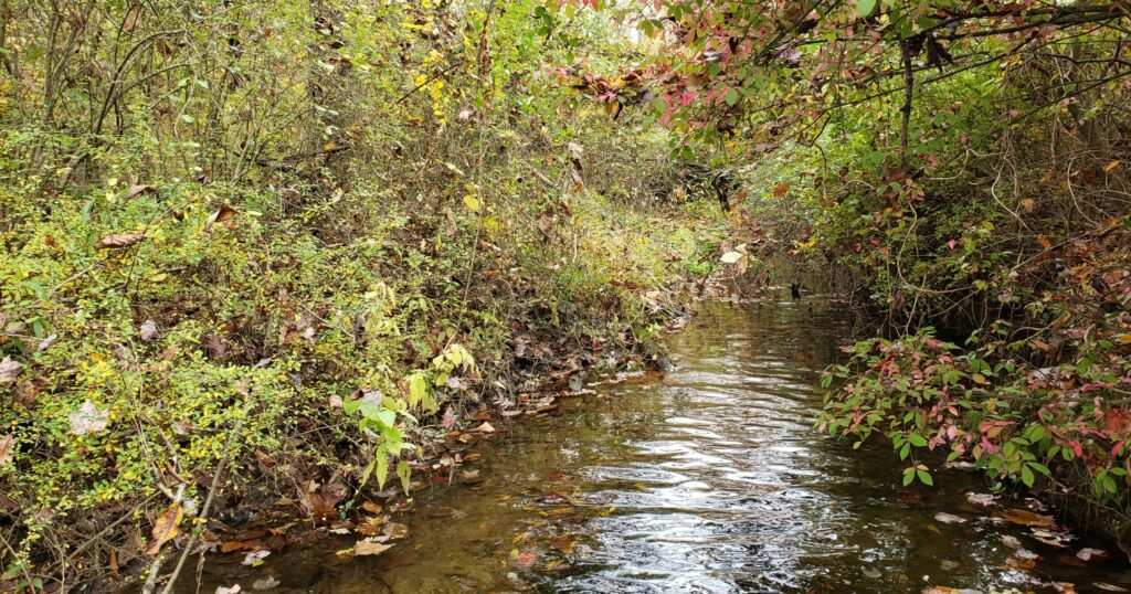 Darby Creek Headwaters Monitoring Program