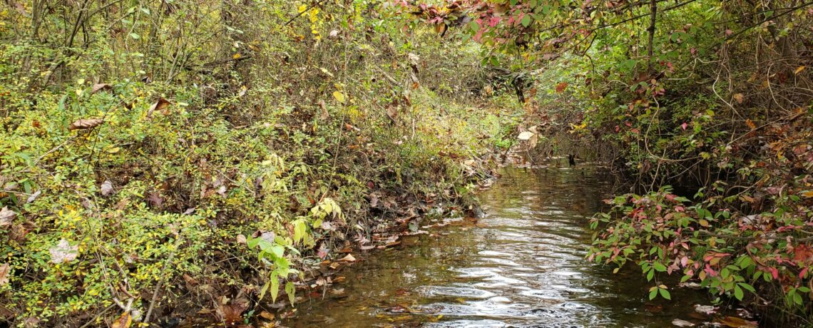 Darby Creek Headwaters Monitoring Program