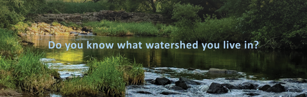 Streamside graphic for website