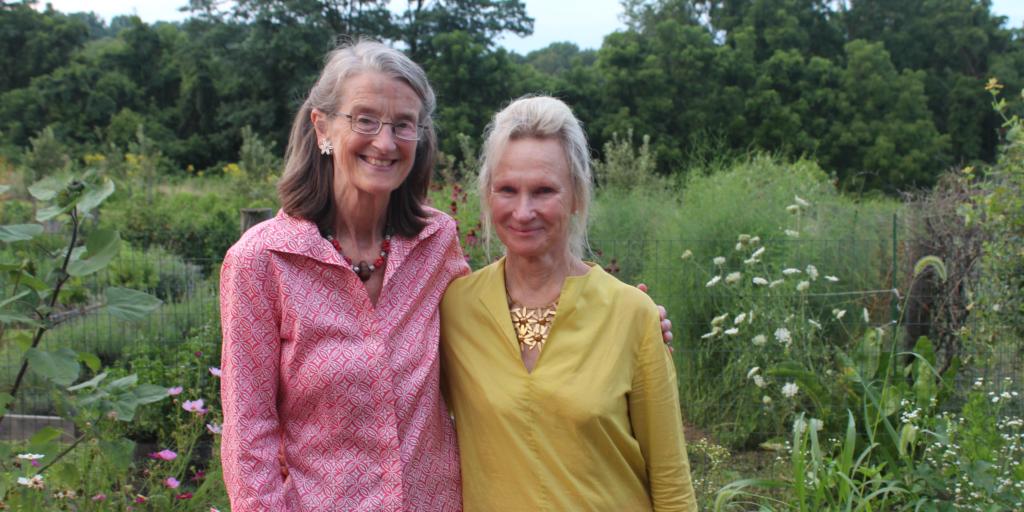 The Wonderful Women of Willistown!