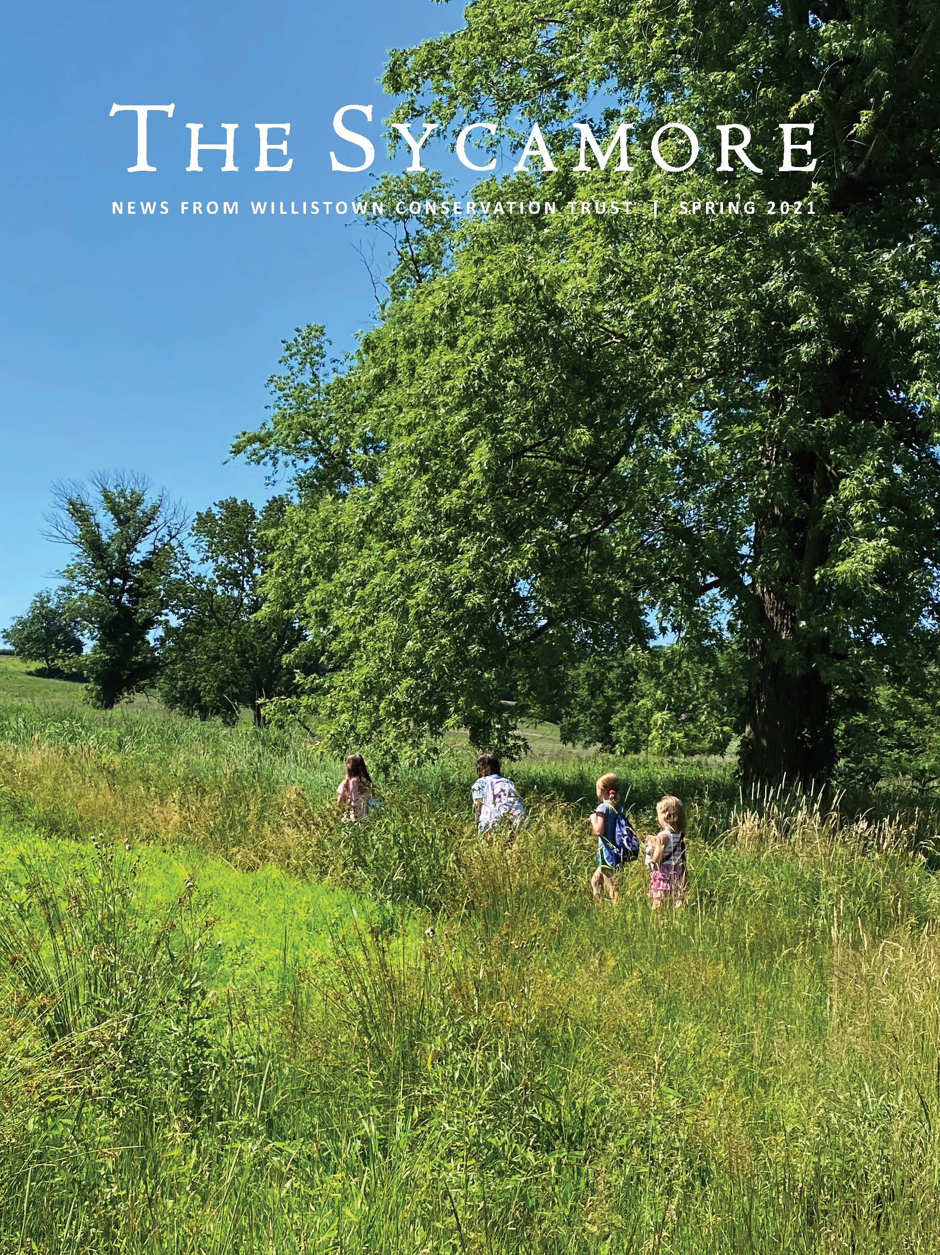 2021 Spring Sycamore Newsletter_Front Cover Image