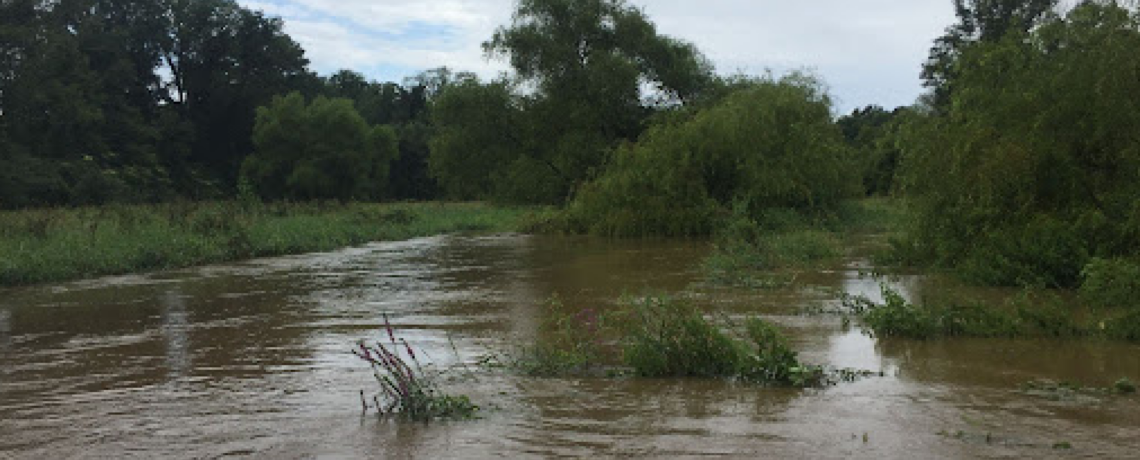 Flooding 101